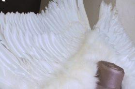 Des robes de mariées inattendues – Laetitia MacLeod, Créatrice
