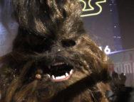 Star wars rogue one bordeaux